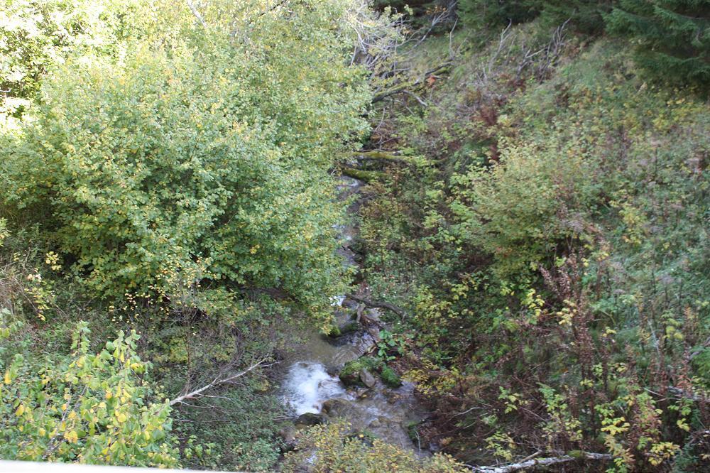 location gite Puy de Dôme en Auvergne à 15 minutes des gorges de la mone